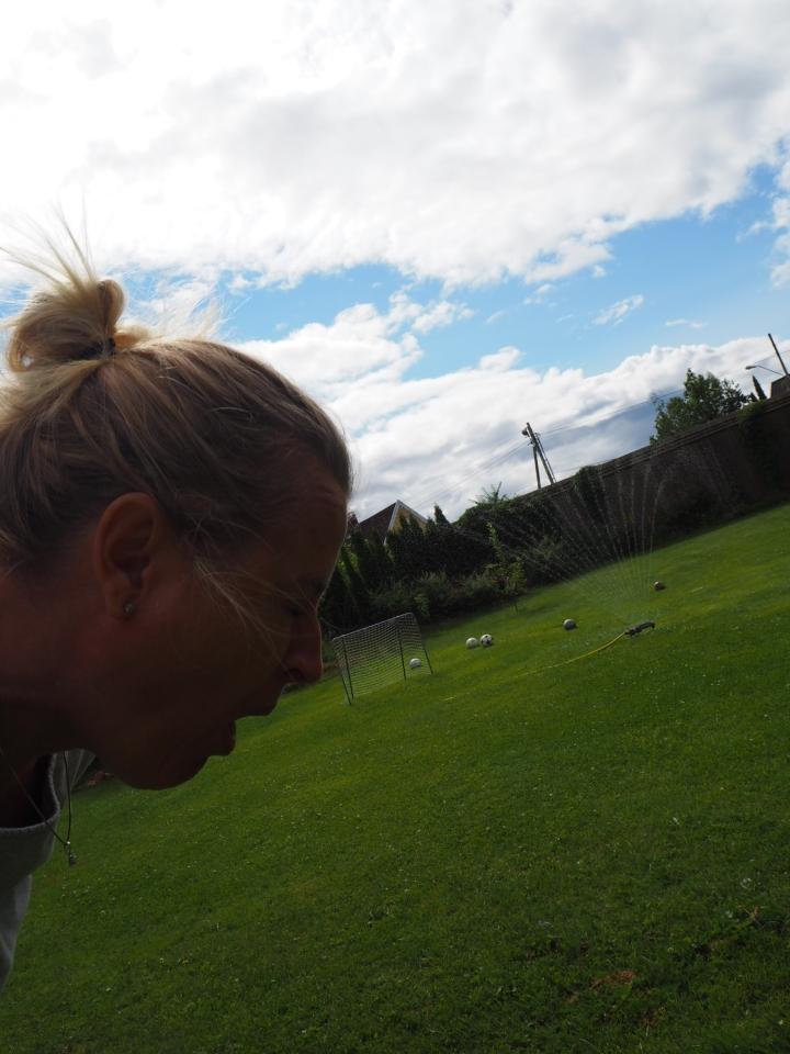 Brunsnegler i hagen